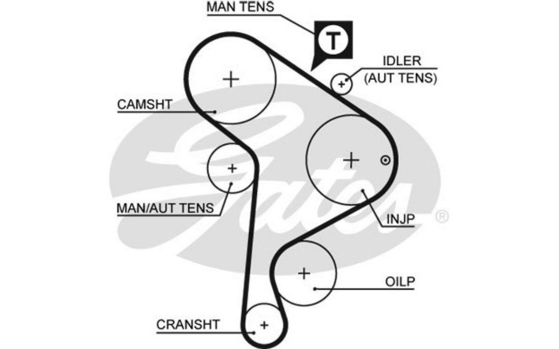 Courroie d/'accessoire pour Seat Ibiza 1.9 SDi 1.9 TD 1.9 D 1.9 TDI GATES