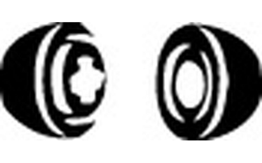 Clé à bougie d/'allumage écrou magnétique pour HONDA CB 750 f2 Seven Fifty rc42a 96-03